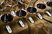 Glasses of red wine, Le Pupille, Maremma, Tuscany, Italy