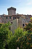 Blick über die Dächer, Tenuta Monteverro, Maremma, Toskana, Italien