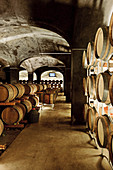 Wine barrels in a natural cellar, Foradori Elisabetta vineyard, Trentino, Italy