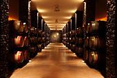 Barrique cellar, Herdade Grous, Alentejo, Portugal