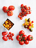 Tomatoes in different shapes and colour