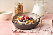 Granola with nuts, oats, berries and milk