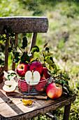 Frische Äpfel auf Holzstuhl im Garten