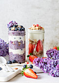 Strawberry and blueberry granola