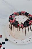 Cream cheese tart with summer berries