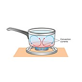 Convection currents in a saucepan, illustration