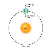 Earth orbiting the Sun, illustration