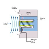 Moving-coil microphone, diagram
