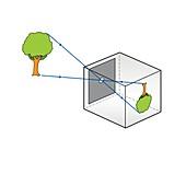 Pinhole camera, illustration