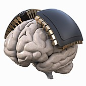 Computer-assisted brain, illustration