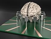 Brain-computer interface, illustration