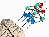 Brain with artificial neural network, illustration
