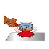 Heat transfer in a pan on a stove, illustration