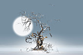 Tree and branches exploding against moon