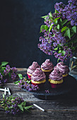 Vanilla cupcakes with purple frosting