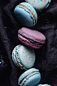 Blue and purple french macarons on a blue napkin