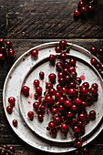 Red currants on a ceramic plate