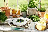 Savory herbed cheese cake