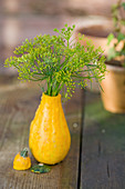 Kleiner Strauß aus Fenchelblüten in Zierkürbis als Vase