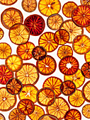 Dehydrated citrus slices