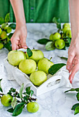 Grüne Äpfel auf Holztablett