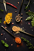 Assorted spices in spoons and fresh herbs
