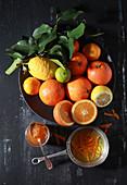 Various citrus fruit - lime, lemon, orange, mandarine, pomelo and kumquats