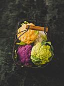 Violetter, orangefarbener, weißer und grüner Blumenkohl in Drahtkorb