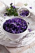 Violette Veilchenblüten in Schälchen und Sieb