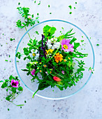 Salad with wild herbs and edible flowers