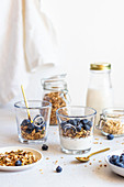 Granola with blueberries