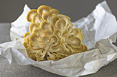 golden oyster mushroom on paper