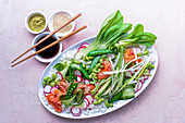 Sashimi salmon platter with sticky sushi rice, edame beans, bok choi, radish slices, cucumber slices and spring onions