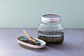 Mountain lentils germinating in a jar of water