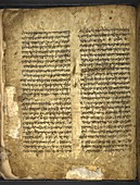 Ancient Torah page