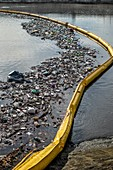 Garbage boom, Ballona Creek, USA