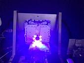 Perseverance rover PIXL's nightlight