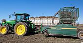Tractor pulling a sugar beet harvester