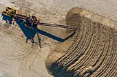 Sugar beet farming, aerial photograph