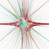 Nerve cells, abstract illustration
