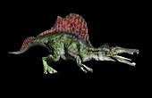 Artwork of spinosaurus aegyptiacus
