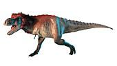Artwork of a feathered tyrannosaurus