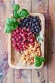 Raspberries - three types - pink, black and yellow