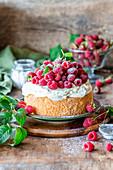 Raspberry cake with sour cream and vanilla sponge