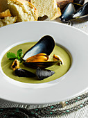 Welsh mussel and parsley soup