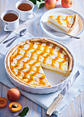 Cheesecake with apricot grid