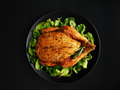Roast chicken on mixed herb salad