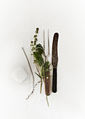 Carving cutlery, meat fork, kitchen string and herbs