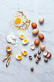 Raw and cooked eggs