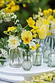 Kleine Flaschen mit Frühlingsblumen: Hornveilchen, Narzisse, Hahnenfuß, Tulpe, weißes Vergißmeinnicht und Kreuzkraut